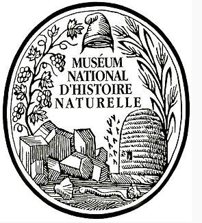 logo_museum