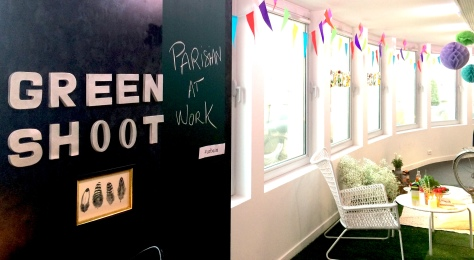 green shoot  soupe